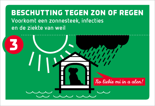 tip 3: beschutting tegen zon of regen
